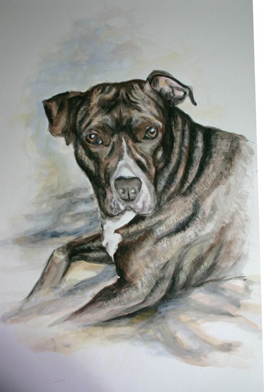 Butcherhund